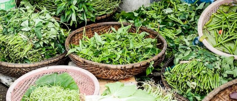 herbs-to-cleanse-the-body