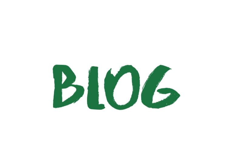 blog about vegan